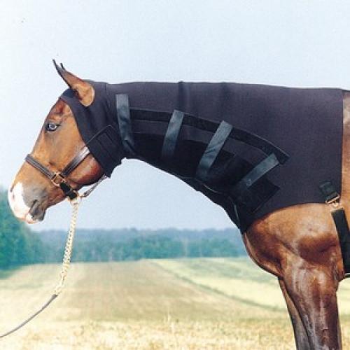 Dura-Tech® Ultimate Neoprene Sweat