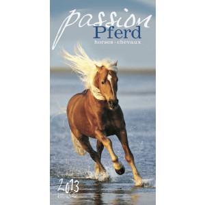 Passion Pferd 2013