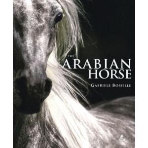 The Arabian Horse (Gabrielle Boiselle)