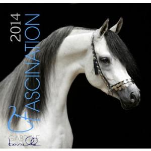Fascination 2014