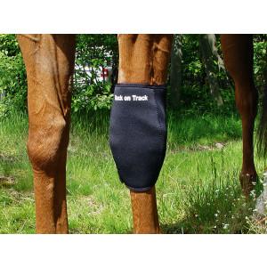 Knæbandage til hest