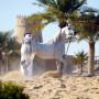 Tutto Arabi 2/2013 - March